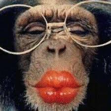 kiss!!!!!!!!!! kuss!!!!!!!!! bisou!!!!!!!!!