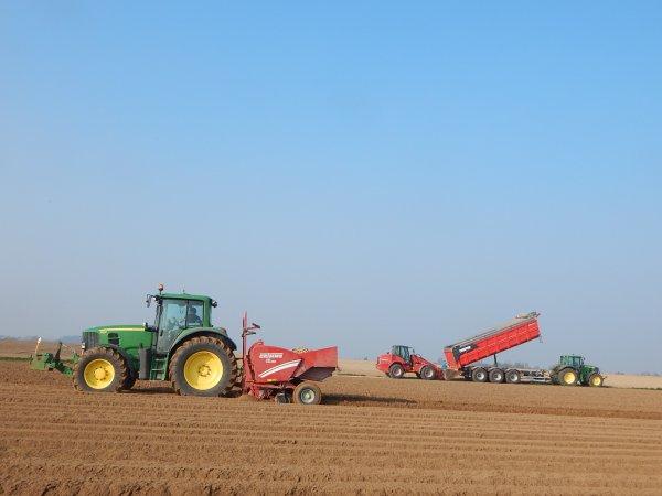 Plantation de pommes de terres - Chantier N°2