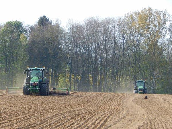 Plantation de pommes de terres - Chantier déjà vu