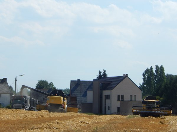 Moisson d'escourgeon - Chantier N°4