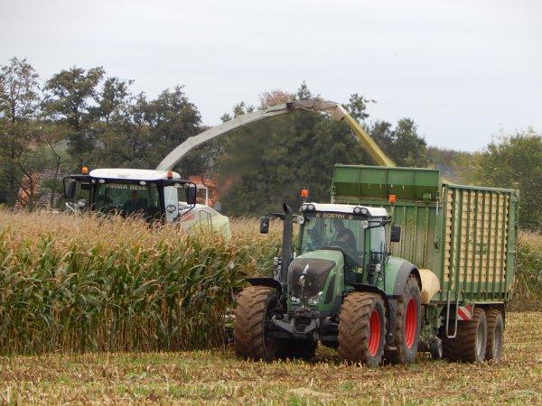 Ensilage de maïs - Chantier N°1
