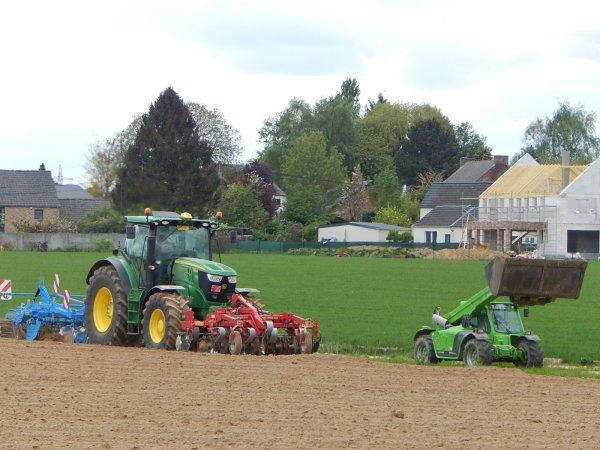 Plantation de pommes de terre - Chantier N°5