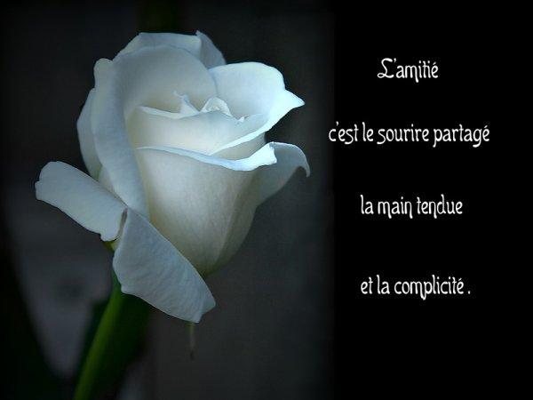 MERCI  du fond du coeur a  vous tous mes AMIES & AMIS  de votre Présence ,  de votre Fidélité  de chaque jours qui passe ..... ....Bisousss
