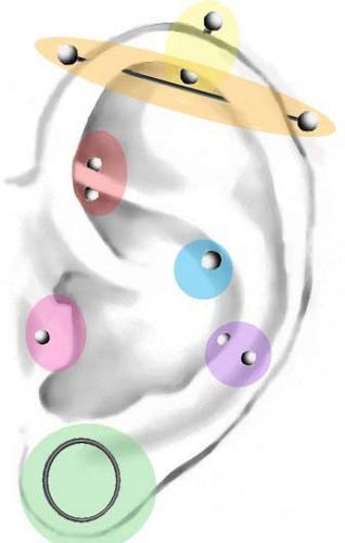 .::.Fiche Piercing Oreille.::.