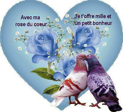 Texte pigeon amoureux mon univers - Un coeur amoureux ...