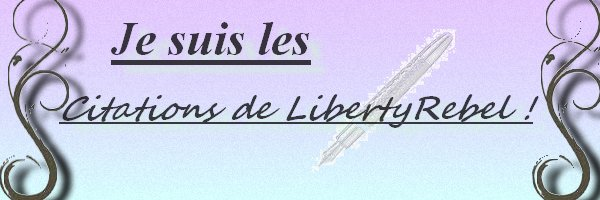 Bannière pour LibertyRebel.