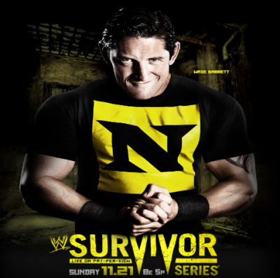 WWE Survivor Series 2010!