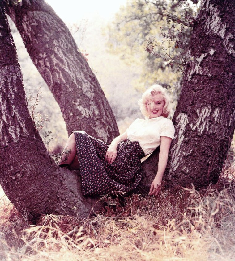 "1953, autre belle session de Marilyn par Milton GREENE, intitulée ""Tree""."