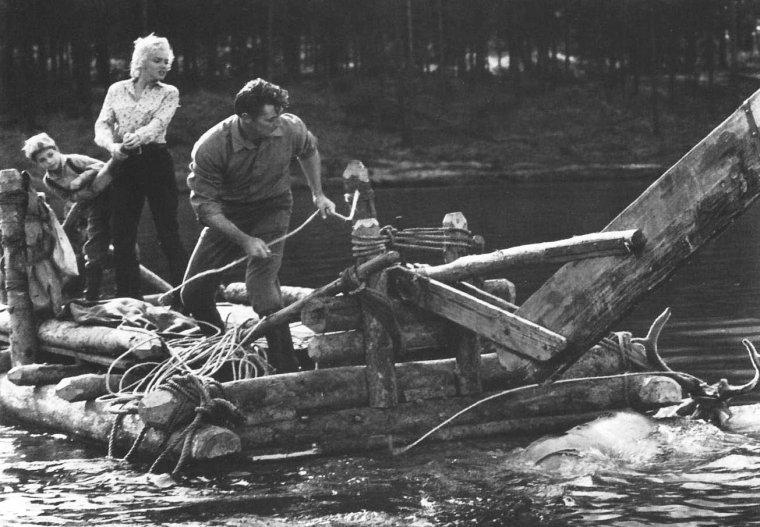 """1953 """"River of no return"""" (La rivière sans retour) d'Otto PREMINGER (photos de tournage et photos du film) : ANALYSE et CRITIQUE (part 6) / Au terme de cet itinéraire, épuisant mais rédempteur, Matt et Kay auront appris à se défaire de cette défiance d'autrui qui les coupe du monde, et à se défaire de cette pudeur qui les empêche de s'avouer leur amour mutuel.  La merveilleuse alchimie du couple MITCHUM - MONROE est pour beaucoup dans le ton heureux et serein de ce beau récit d'apprentissage ; la quiétude, la force tranquille et naturelle émanant du grand Bob, ici dans un emploi sur mesure, offrant un contrepoint parfait à la fragilité refoulée de Marilyn. Il est de notoriété publique que l'actrice s'entendit très mal avec son réalisateur, PREMINGER allant jusqu'à déclarer que """"diriger Marilyn, c'est comme diriger Lassie ; il faut faire quatorze prises pour obtenir l'aboiement adéquat"""" ! Mais les exemples d'antipathie entre le réalisateur viennois (qui sera néanmoins beaucoup plus patient avec une autre comédienne en proie au doute, Kim NOVAK, sur le tournage de son admirable film sur la dépendance aux narcotiques, """"The man with the golden arm"""" sont légions, et dans son autobiographie, il s'en prendra surtout à la répétitrice de Marilyn sur le tournage, l'Allemande Natasha LYTESS, coupable selon lui, non seulement de gâcher le naturel ébouriffant de la comédienne mais aussi de réussir à déstabiliser le très jeune et pourtant déjà très professionnel Tommy RETTIG (""""Les 5000 doigts du Dr.T""""). Et PREMINGER de saluer l'initiative de Robert MITCHUM, sachant ramener sa partenaire à plus de simplicité à grand recours d'encouragements et au besoin... de puissantes bourrades sur le dos ! ..."""