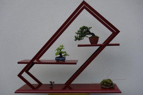 Petite présentation 100% composition perso (arbres et support)