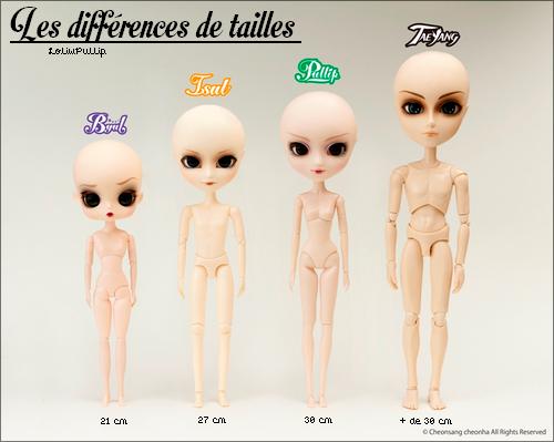 Informations sur les Dolls.