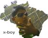 solo-x-boy-2maik