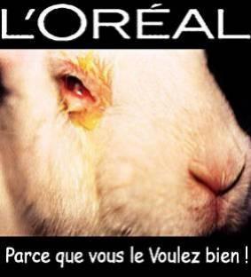 Voila pour ce qui est du maquillage testé sur les animaux....  je me maquille mais quand je vois çà, ça me dégoute...
