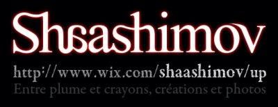 Shaashimov - Entre plume et crayons, créations et photos