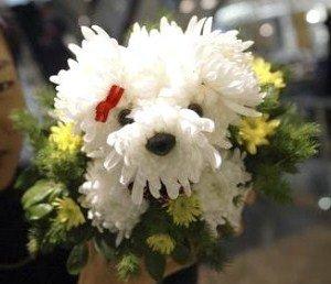 Des toutous réalisés avec des fleurs.