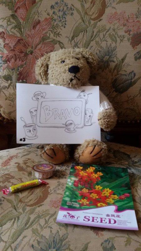 Un petit ours bien curieux