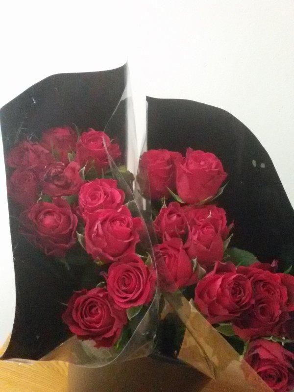 Je partage avec vous ces deux bouquets de roses, pour vous remercier de vos gentils commentaires et de votre fidélité.