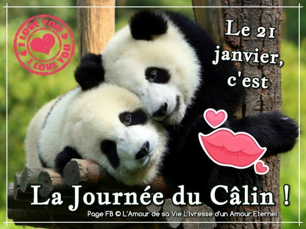 21 janvier : Hug Day, Journée internationle des câlins