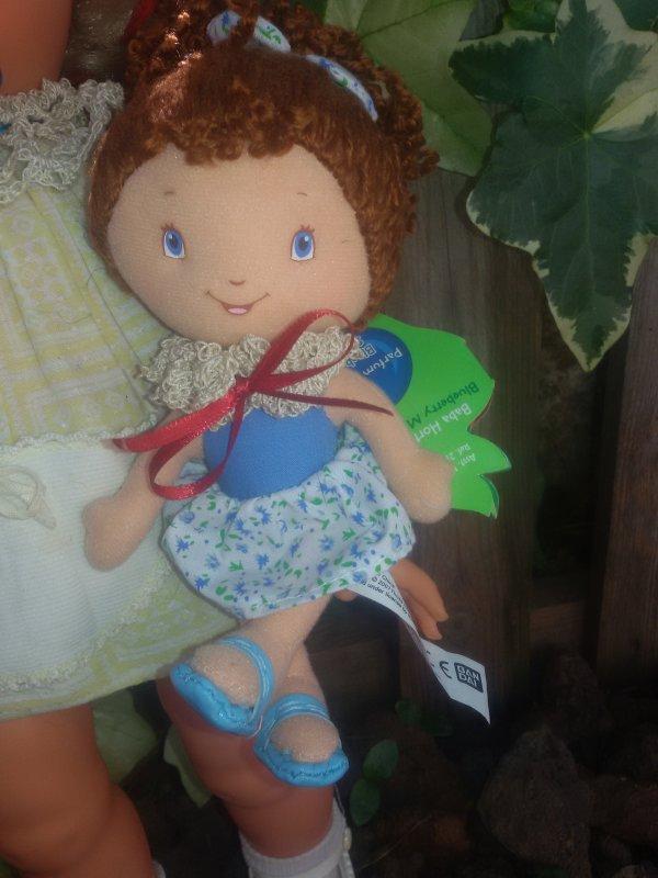 Une jolie Gégé et sa poupée Clafoutis aux Myrtilles (Huckleberry Pie)  3 photos.