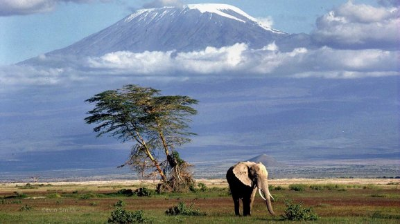 Tenue Kilimanjaro à compléter.