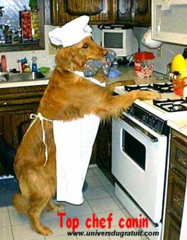 Quand on reçoit dans les familles nombreuses tout le monde met la main à la pâte. 7 photos.