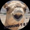 Commune-T-E-P