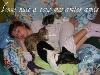 (l)bonne nuit a tous mes ami(es) !! (l)