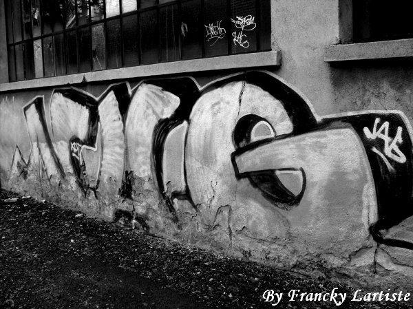 La Liberté d'Expression du Puy-en-Velay...(Photo prise par moi-même)...