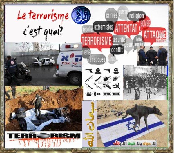 Israël terroriste !