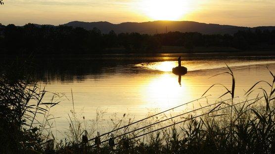 (A FAIRE PARTAGER AU MAX !!!! ) Pétition | Autoriser la pêche de nuit en France : Demande à la Fédération Nationale de la Pêche en France | Change.org