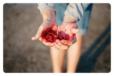 Le mensonge donne des fleurs mais pas de fruits.