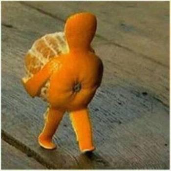 jeruk berjalan
