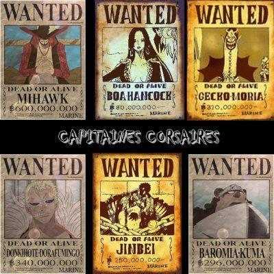 Capitaine corsaire :D le quelle preféré vous ?
