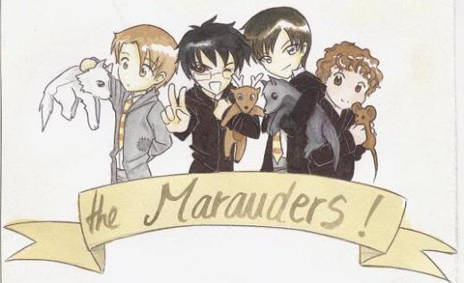 les maraudeurs, une histoire qui mérite d'être racontée !!