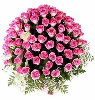 Le rose c ma couleur préférée