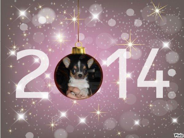 Bon réveillon et Bonne Année a tous :D