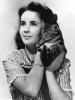 Elizabeth Taylor était une grande amie des bêtes comme Michael Jackson.