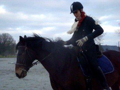 Tapis Dressage bleu roi