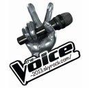 Photo de The-Voice-2013
