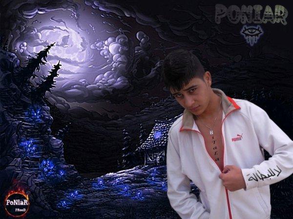 PoNiaR