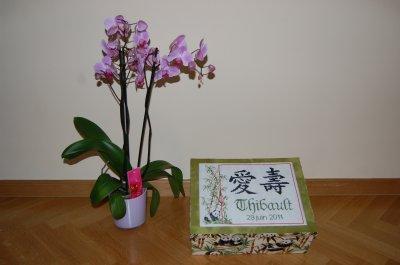 Boîte Thibault