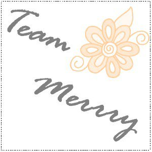 ~Team-Merry®