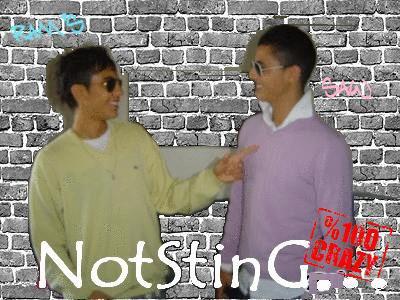 NotSting