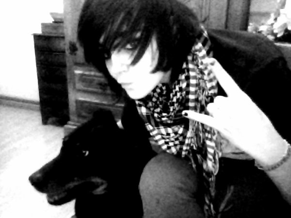 Fidji-Chan ma chienne adoptive haha c'est elle qui m'a chosi et nous etion incéparable avant son déssé .. paix a ton ame ma chérie... :'( (l)
