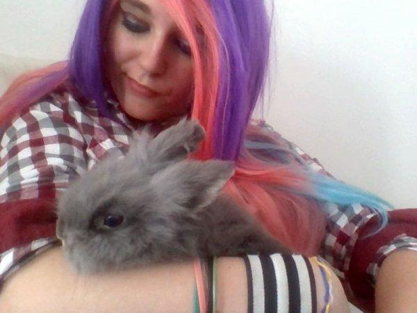 J'aime les lapin *w* (l)