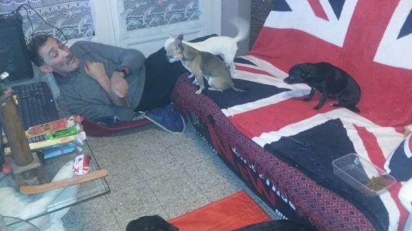 voila d ou jen suit moi je dors dans le panier des chihuahua et eu on pris le canape