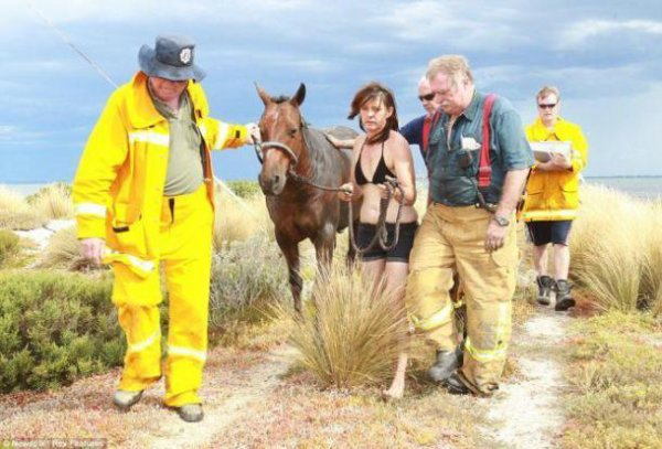 17-11-2017 - Australie - Geelong - Une cavalière sauve son cheval Astro grâce à l'aide d'un agriculteur venu avec son tracteur et des gens qui passaient dans les parages … pour l'aider à se dégager du marécage.