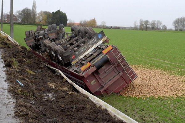 02-01-2018 - Melles - Tournai - Un camion chargé de 30T de pommes de terre verse dans le champ (vidéo)