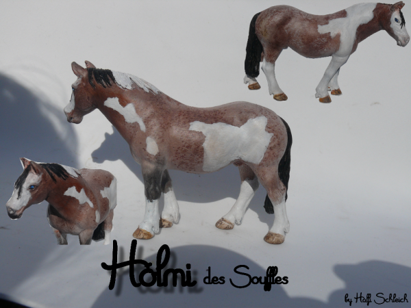 Customs : Hólmi des Souffles