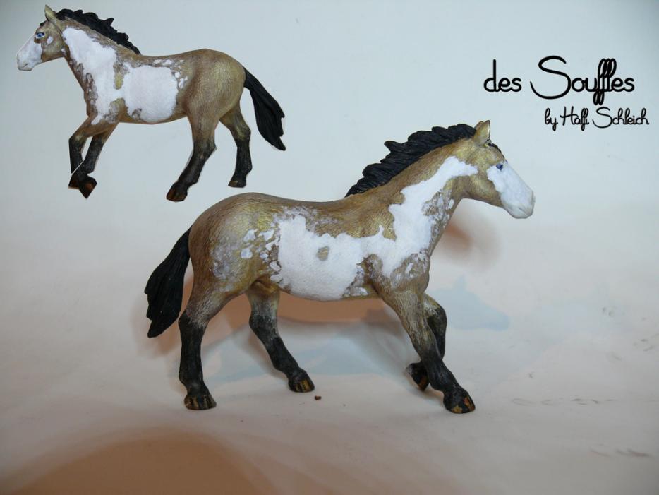 Customs : // des Souffles